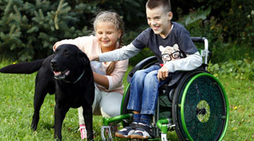 Dog-assisted therapy - Rehabilitation